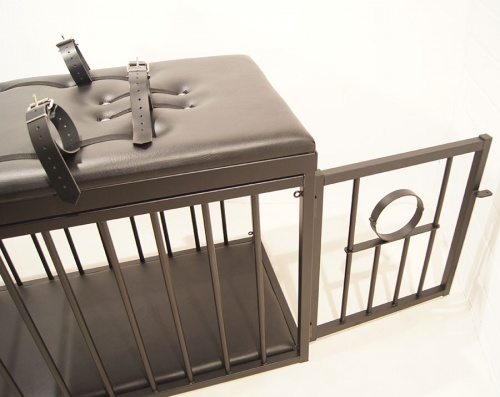 Steel BDSM Cages