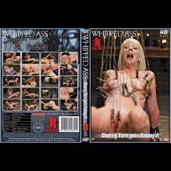 Whipped Ass 48 - Cherry Torn gets Felony'd! - KINK-WA-048