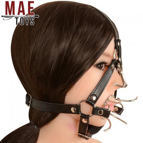 Torture instruments