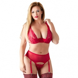 Cottelli Collection Plus Size Rode Lingerie Set - or-2212633