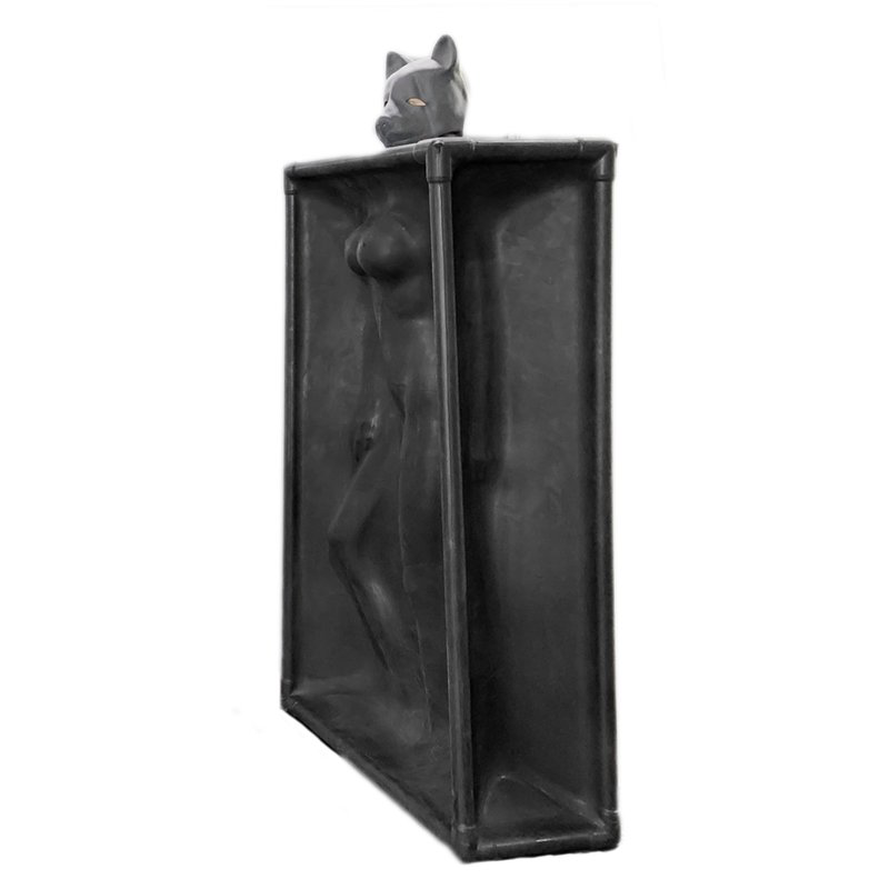 Latex Vacuum Tower by Rubber Shock, an essential for any BDSM, bondage and  latex