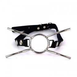 Steel Spider Gag by Kiotos Steel - opr-112-tms-2552