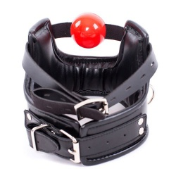 immitation leather Ballgag Collar-Harness - mae-sm-218