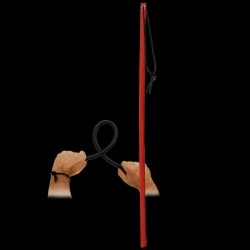 Leather Cane van Saxos - os-0144