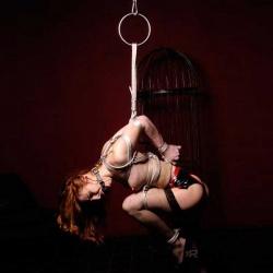 Shibari Rope Bondage Ring - xr-bi800